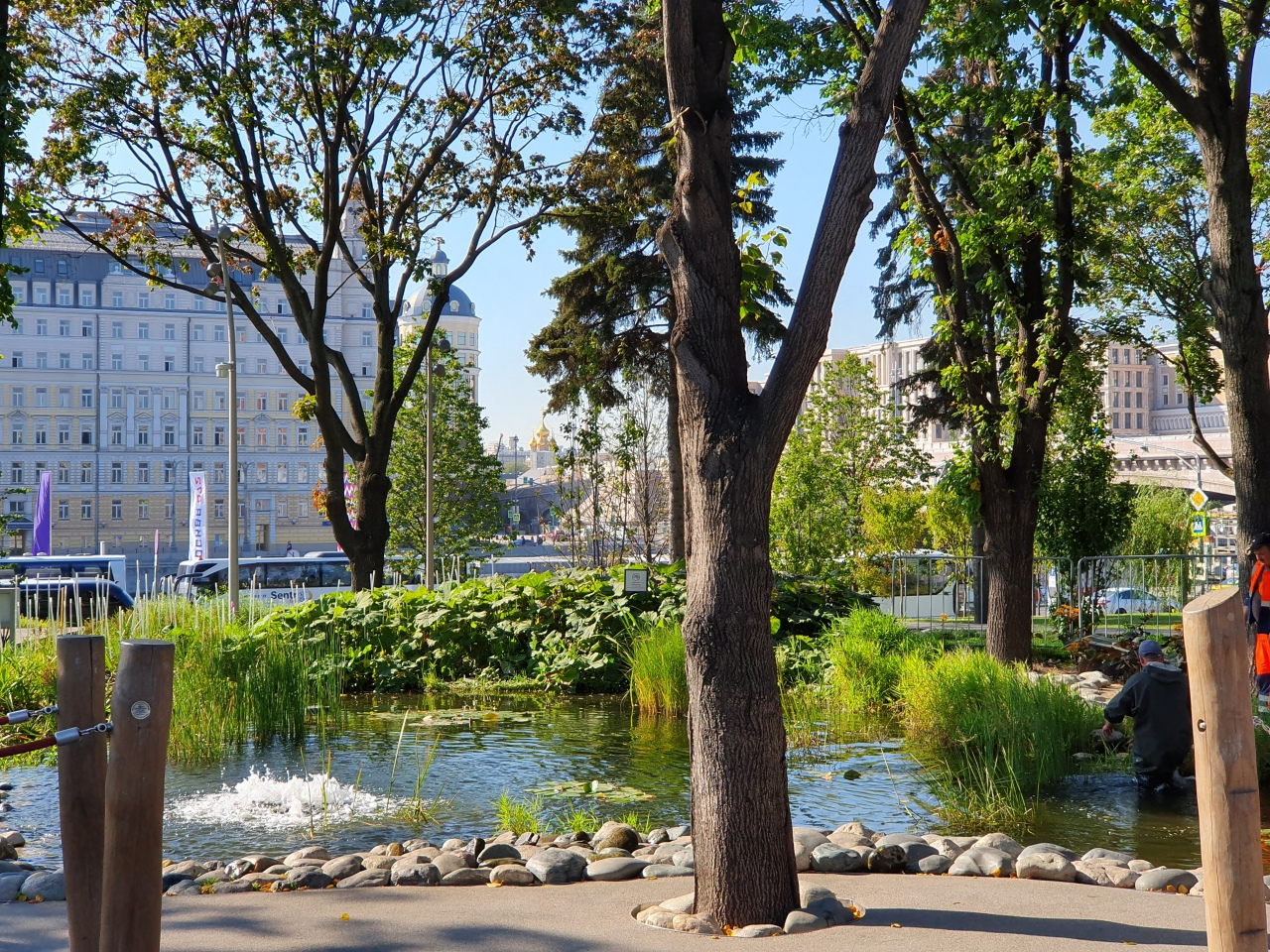 Public Health Reflections: Parks and Green Space