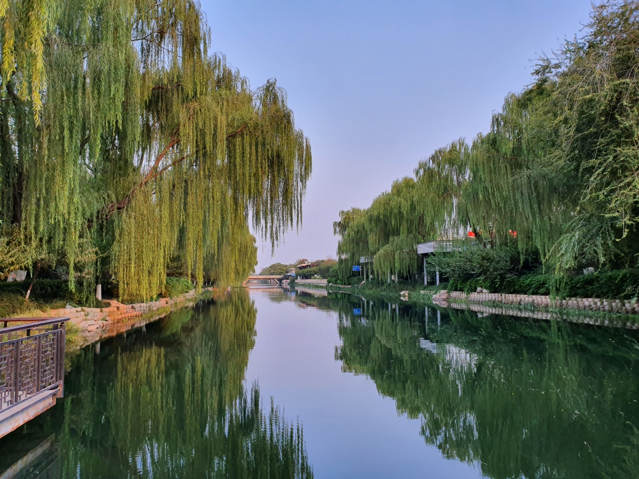 Public Health Reflections: Beijing Green Space