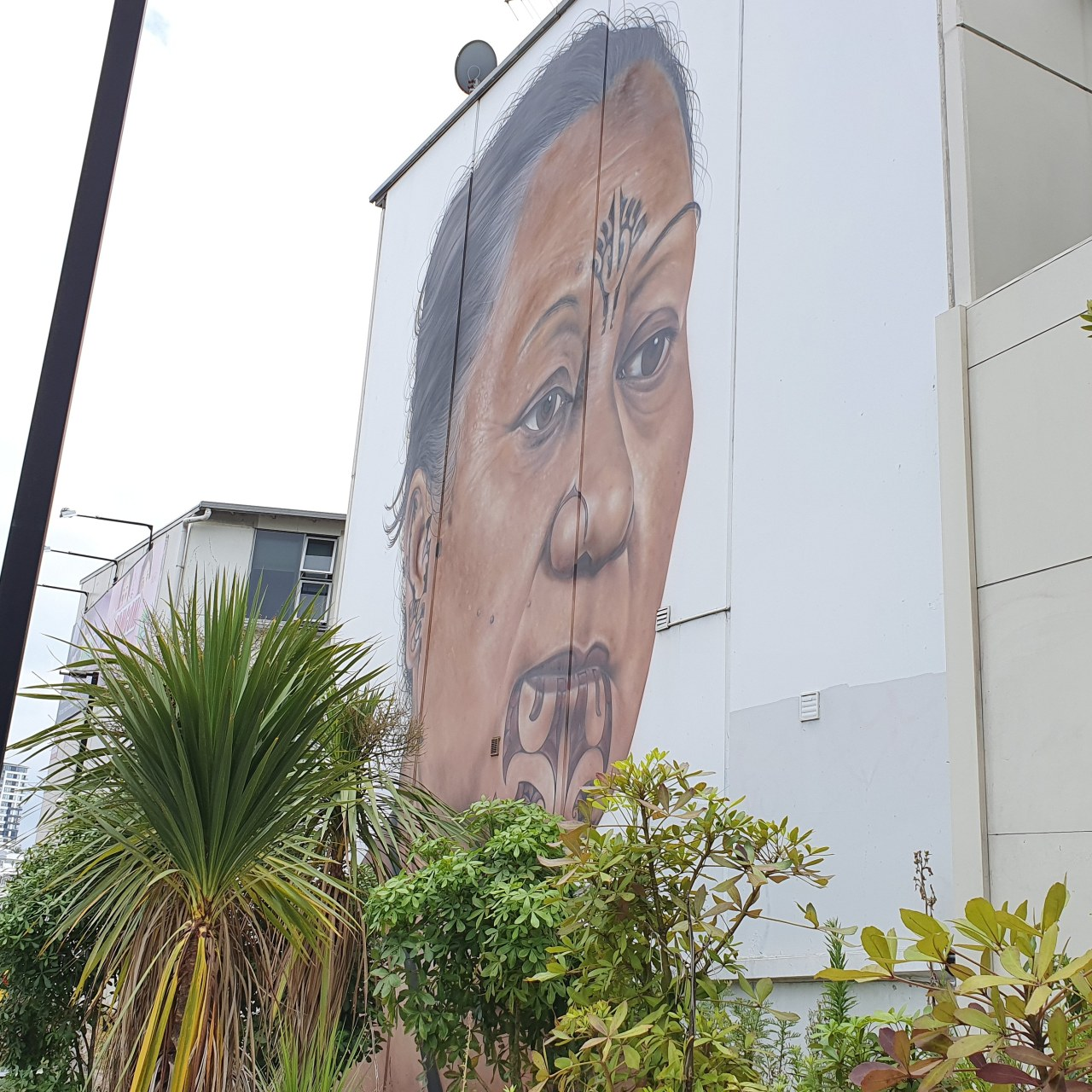 Day 89: Arrival into Auckland – an afternoon in a street art gallery