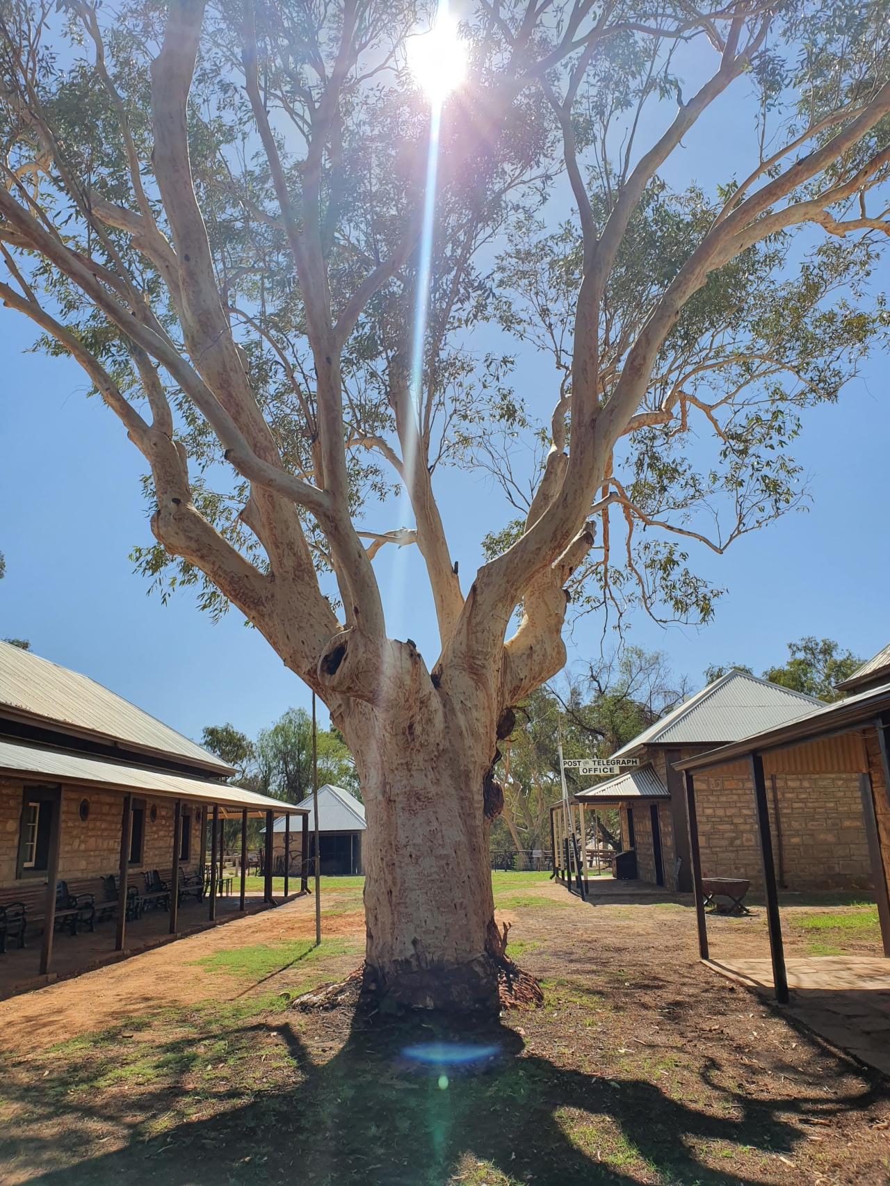 Day 160: The original Alice Springs and the StolenGeneration