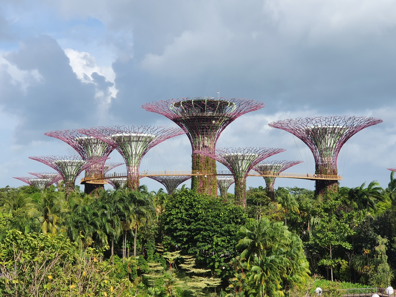 Day 174: Supertrees inSingapore